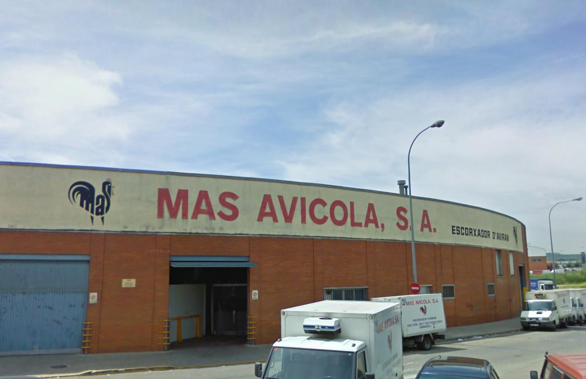 Mas Avícola empresa